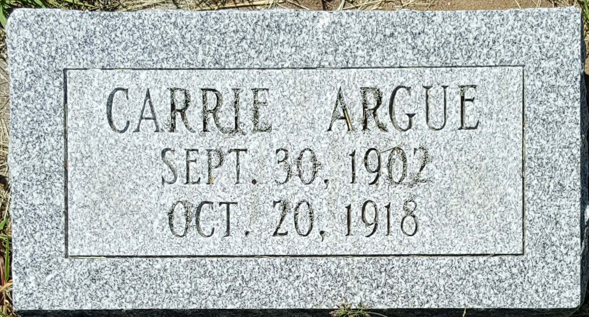 Carrie Argue's Marker